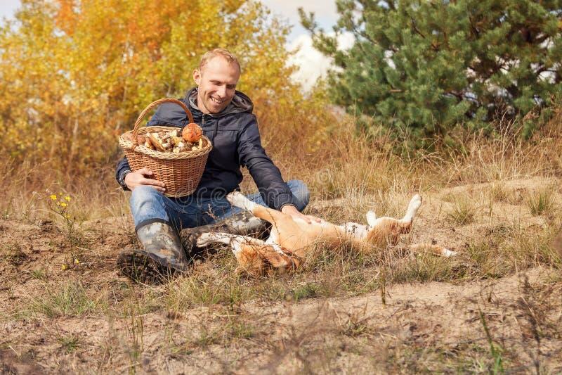 Obsługuje bawić się z jego psem na jesień lasu haliźnie fotografia royalty free