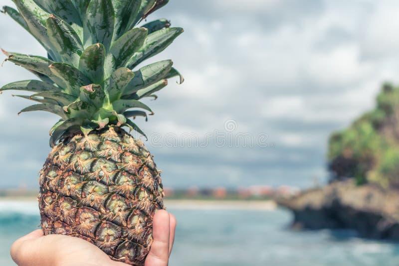Obsługuje rękę z świeżą egzotyczną ananasową owoc na oceanu tle Świeży zdrowej diety jedzenia pojęcie Bali wyspa fotografia stock