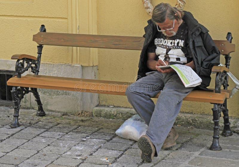 Obsługuje robić jego crossword plenerowy w Sopron, Węgry obrazy royalty free
