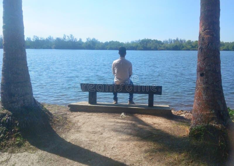 Obsługuje samotnego obsiadanie na ławce przed jeziorem pod słońcem drzewkiem palmowym i - wizerunek obrazy royalty free