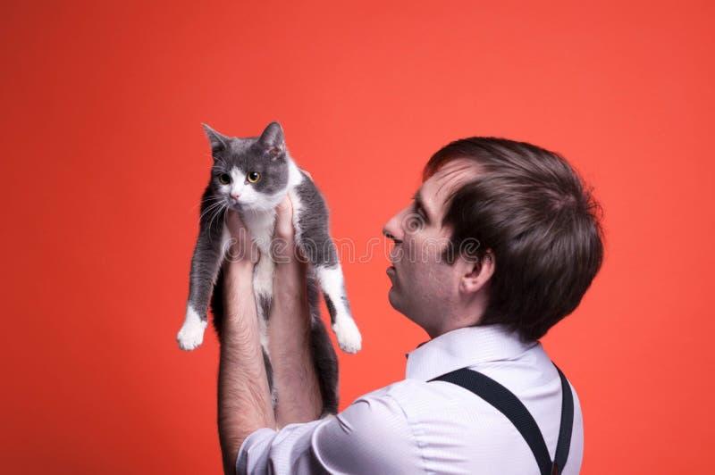 Obsługuje trzymać ślicznego popielatego i białego kota na pomarańczowym tle z kopii przestrzenią obraz stock