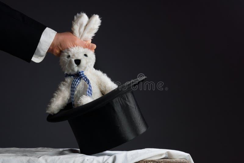 Obsługuje w kostiumu ciągnie królika z kapeluszu zdjęcia stock