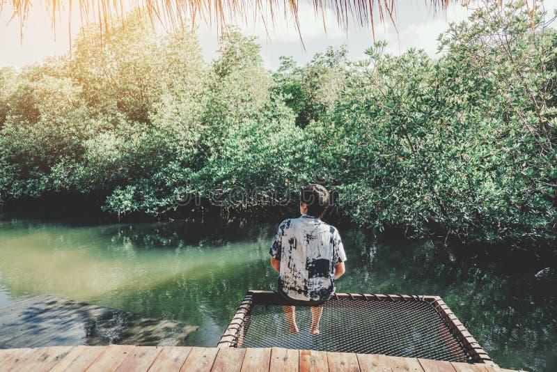 Obs?uguje relaksowa? w namorzynowej lasowej laguny urlopowym czasie obrazy royalty free