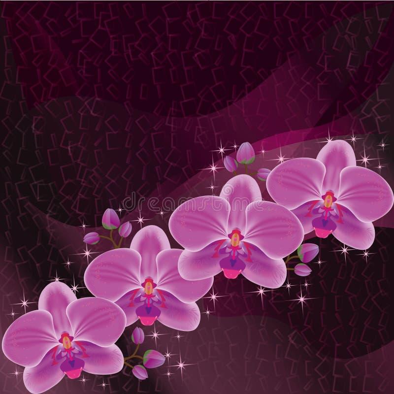 Obscuridade do convite ou do cartão - vermelho com orquídea ilustração stock