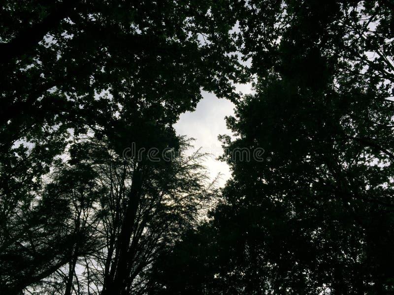 A obscuridade encontra a luz fotos de stock royalty free