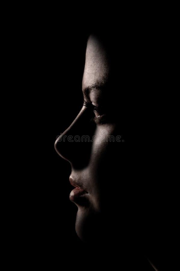 Obscurité de profil de fille photos stock