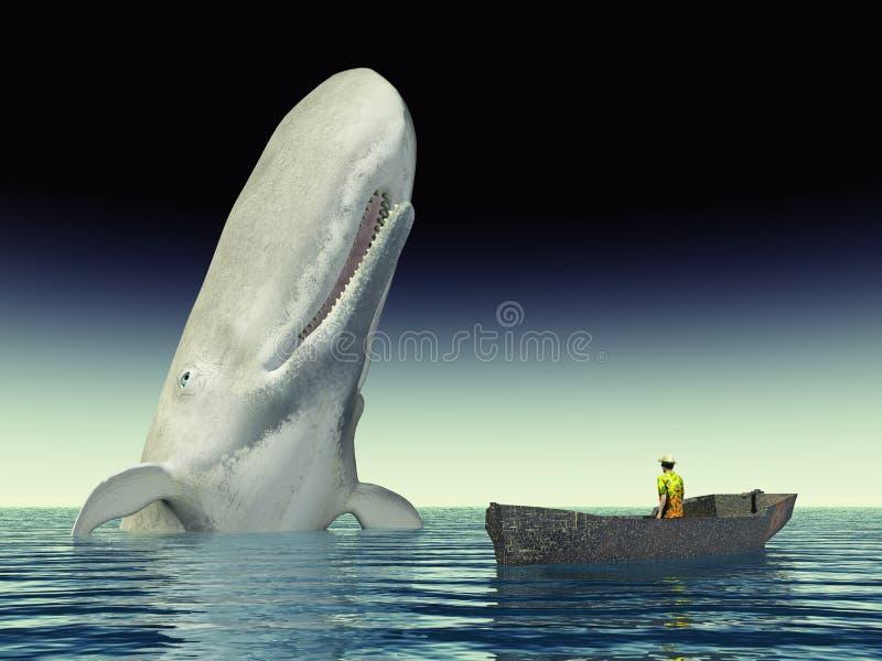 Observação da baleia ilustração royalty free