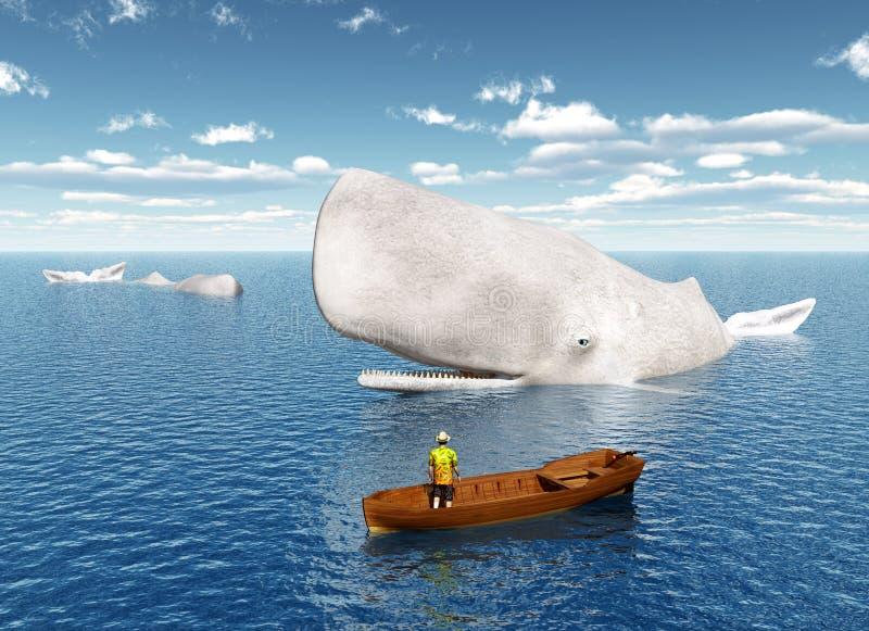 Observação da baleia ilustração do vetor