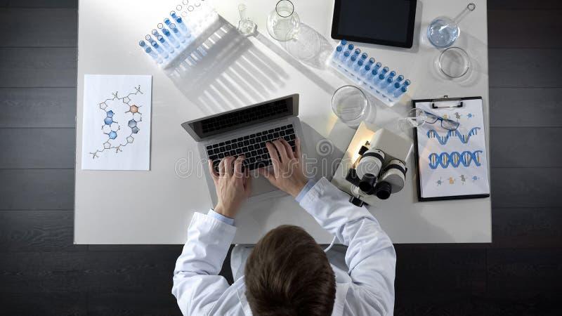 Observações de datilografia do pesquisador no portátil, amostra de vista sob o microscópio fotos de stock