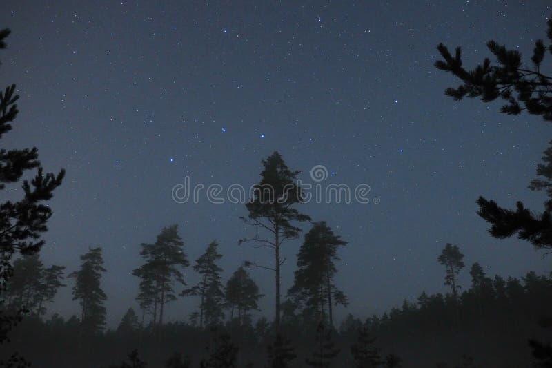 Observación de la constelación de las estrellas del cielo nocturno y del cazo grande imagenes de archivo