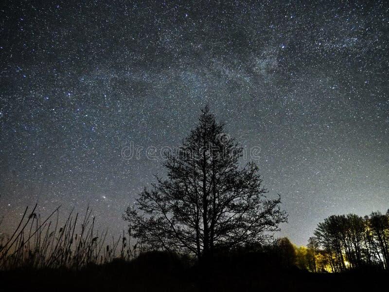 Observación de las estrellas y de la vía láctea del cielo nocturno, constelaciones de Perseus y del Andromeda fotos de archivo libres de regalías