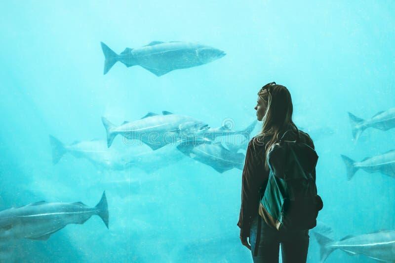 Observación turística de la mujer para los pescados en acuario grande foto de archivo libre de regalías