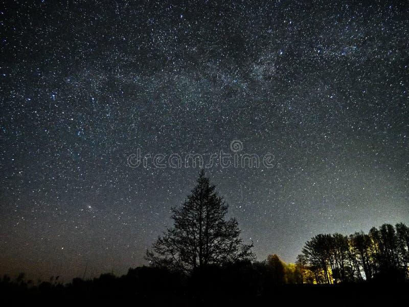 Observaci?n de las estrellas y de la v?a l?ctea del cielo nocturno, constelaciones de Perseus y del Andromeda imagen de archivo libre de regalías