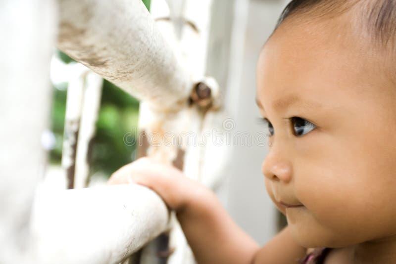 Observador - curiosidad del bebé imagen de archivo libre de regalías