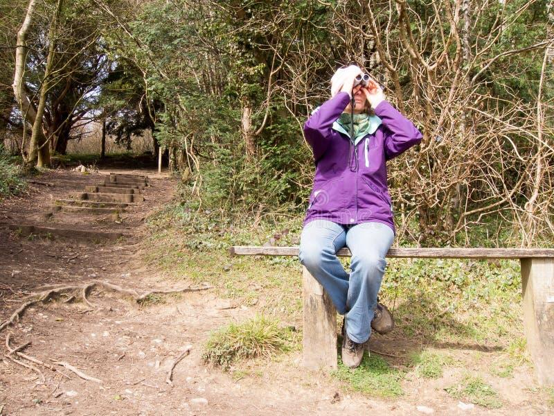 Observador de pássaro fêmea imagem de stock