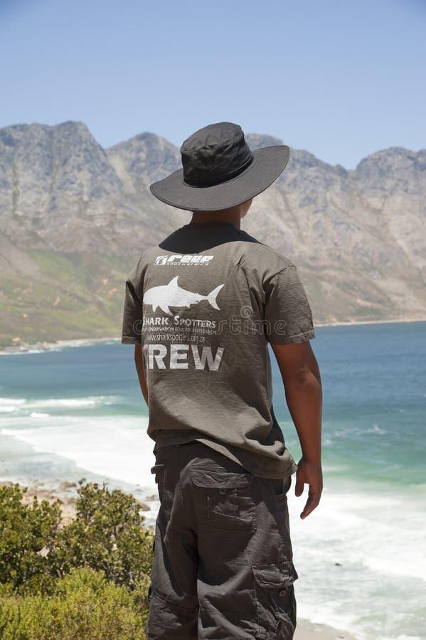 Observador de tiro voluntario del tiburón que mira hacia fuera al mar foto de archivo libre de regalías