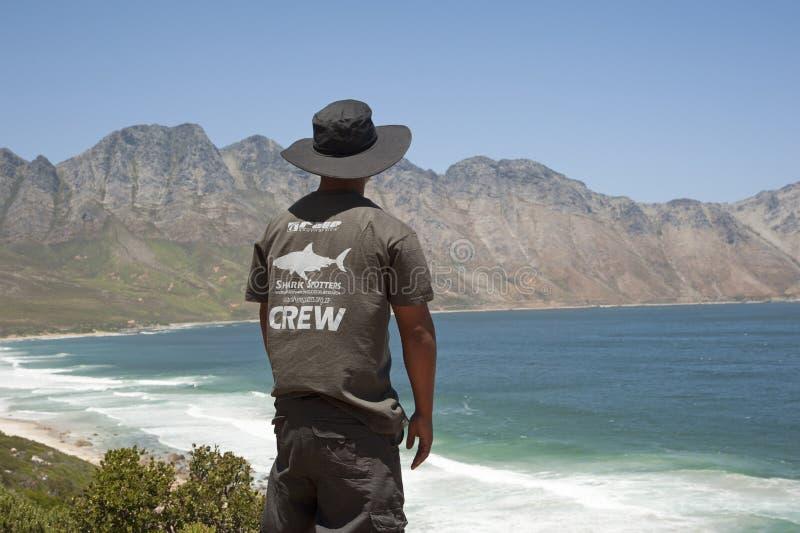Observador de tiro voluntario del tiburón que mira hacia fuera al mar imagen de archivo