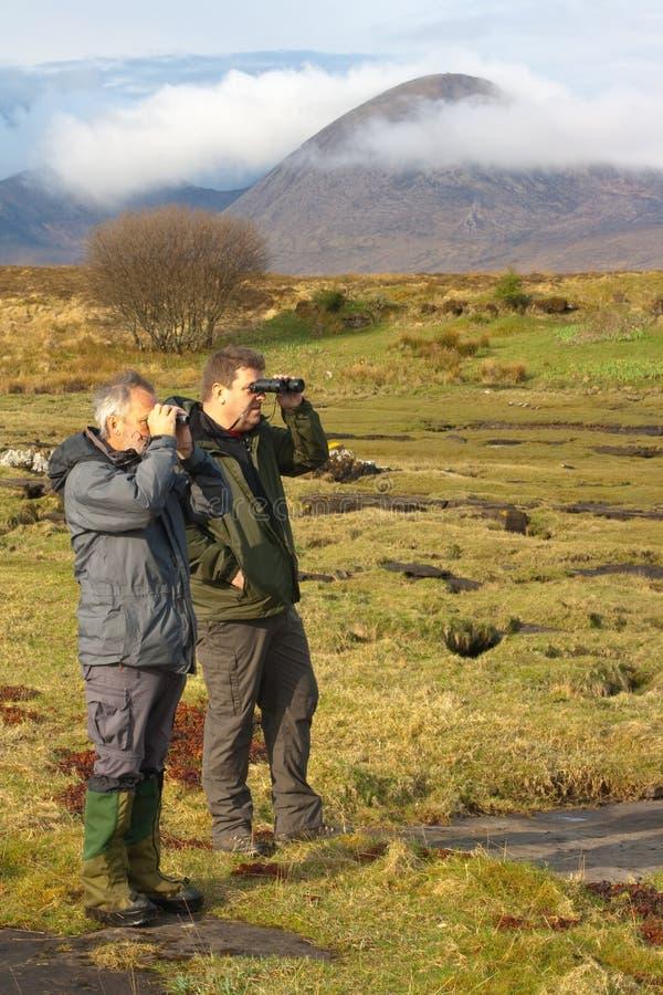 Observadores do pássaro em Skye imagens de stock royalty free