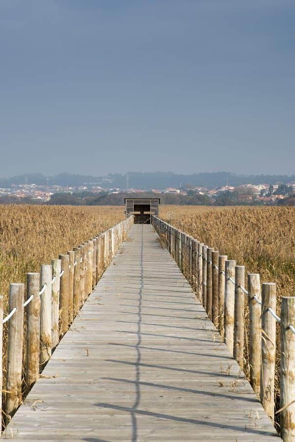 Observatório das aves de madeira na reserva natural de Esmoriz, Portugal imagem de stock royalty free