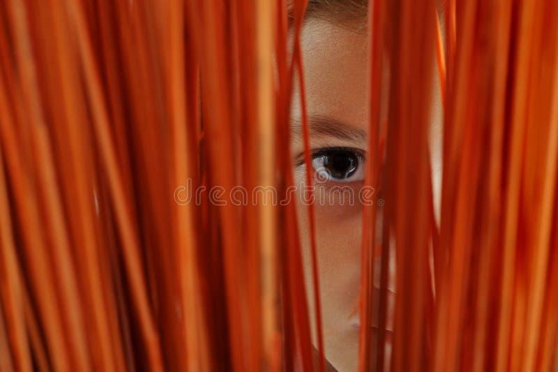 Observation photographie stock libre de droits