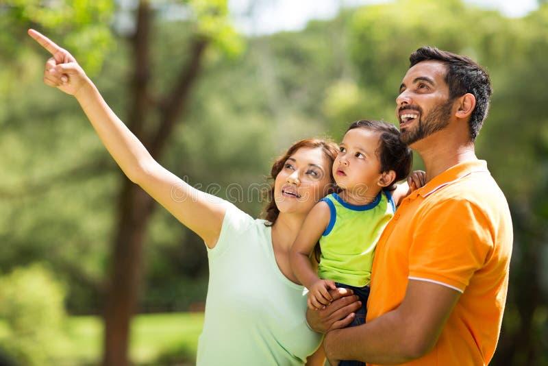 Observation d'oiseau indienne de famille photo libre de droits