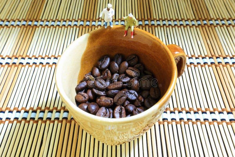 Observation de grains de café photos stock
