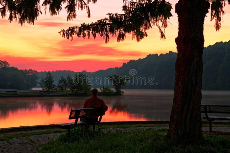 Observation du lever de soleil en parc images libres de droits