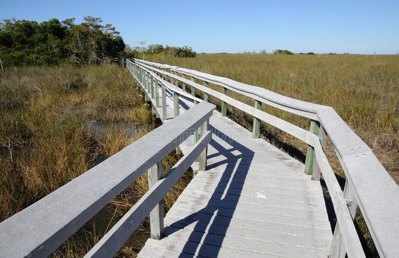 Observation Trail in the Everglades National Park royalty free stock photography