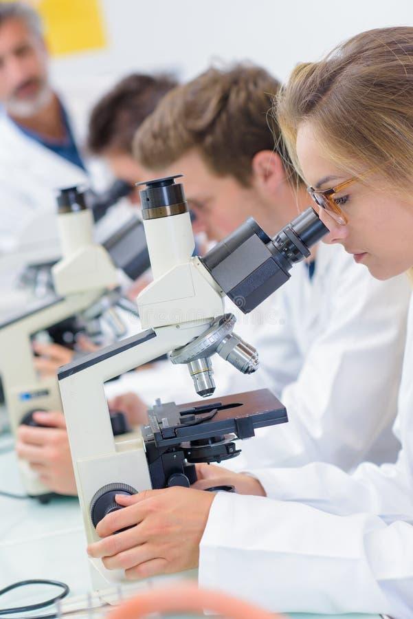 Observation under ett mikroskop royaltyfria bilder