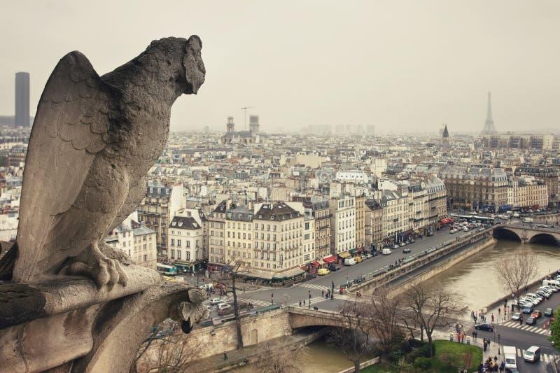 Obserwacja od Cathedrale notre-dame de paris zdjęcie stock