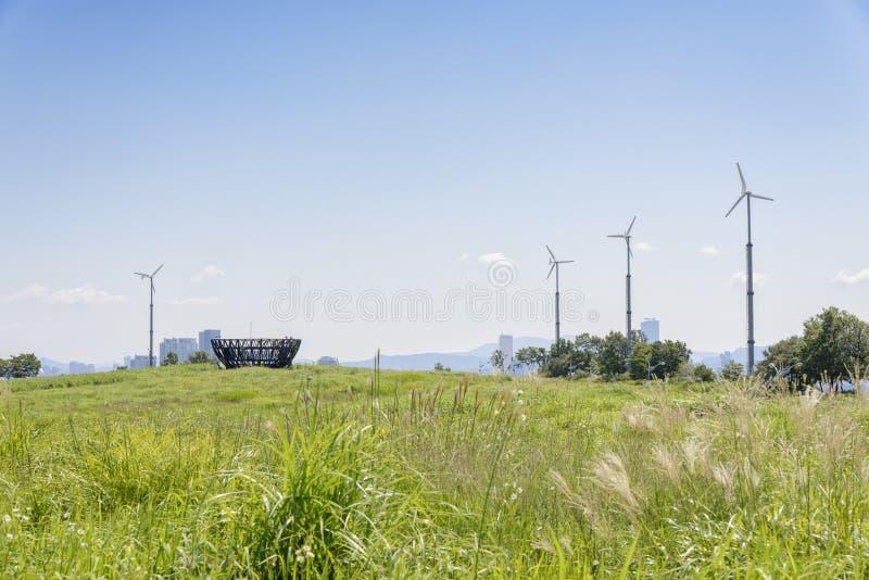 Obserwatorska platforma w srebnej trawy polu zdjęcie royalty free