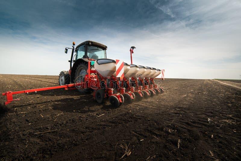 Obsiewanie uprawy przy polem obrazy royalty free