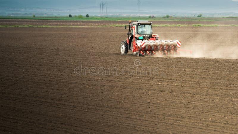 Obsiewanie uprawy przy polem obrazy stock