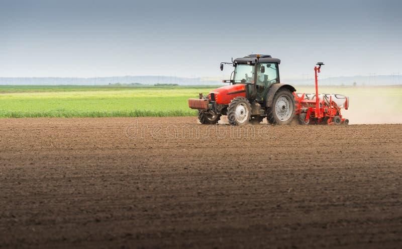 Obsiewanie uprawy przy polem obraz stock