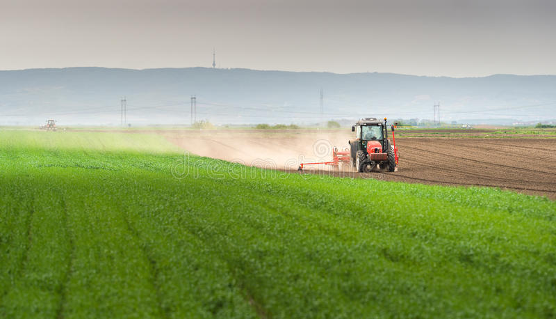 Obsiewanie uprawy przy polem zdjęcia royalty free