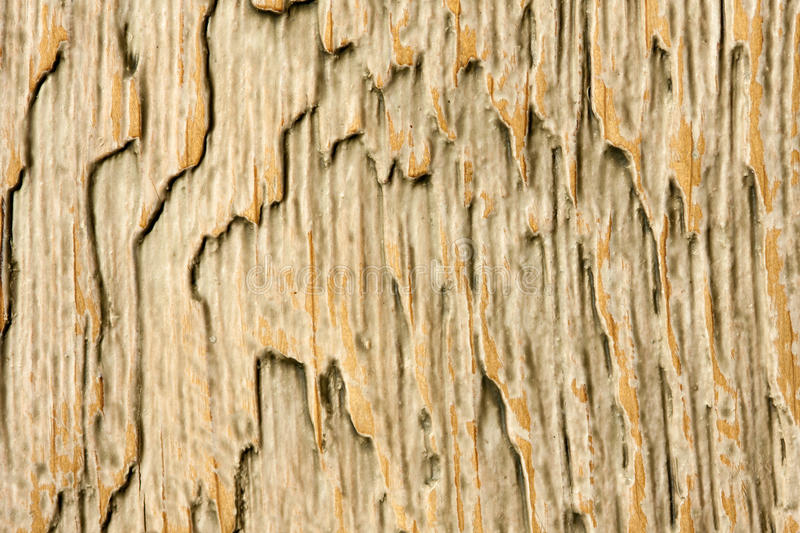 Download Obsolete wooden surface stock photo. Image of dark, deck - 18451584