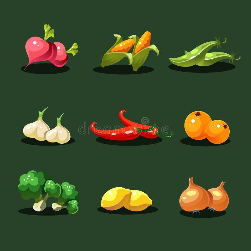 Obst und Gemüse Ikonen-Vektor des biologischen Lebensmittels lizenzfreie abbildung