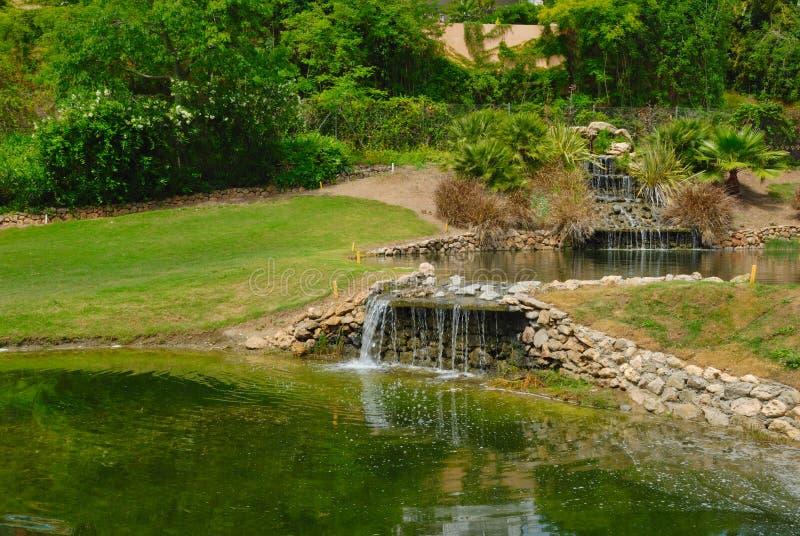Obstacle de l'eau dans le terrain de golf image libre de droits