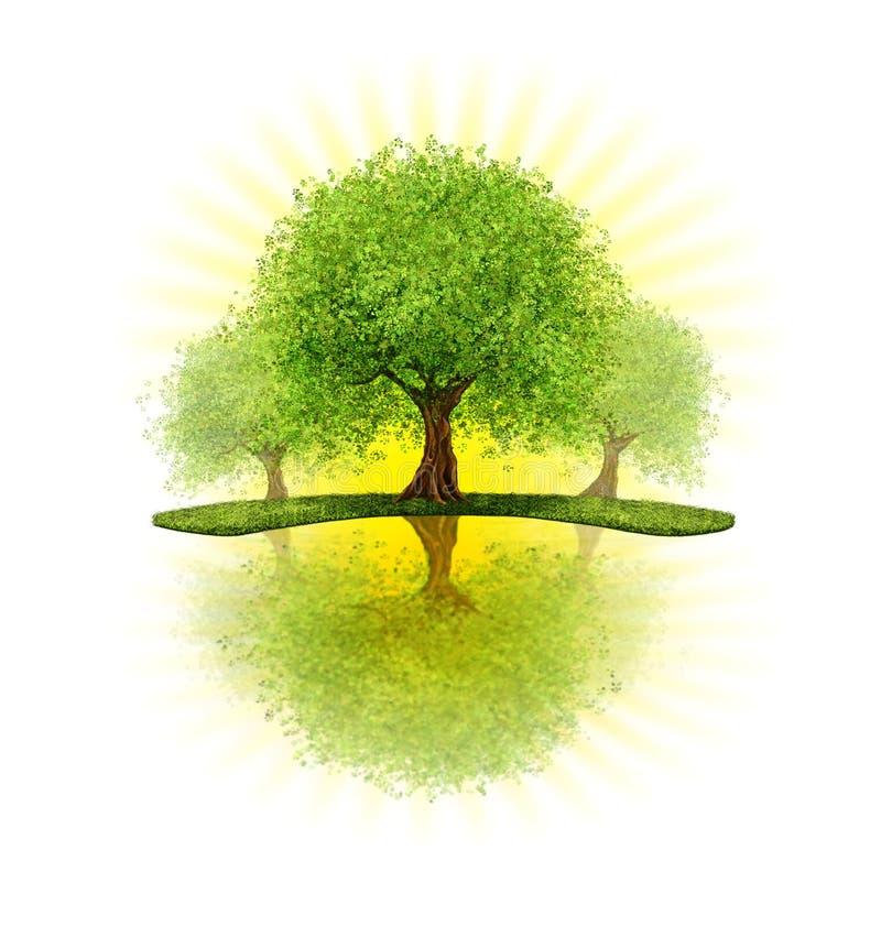 Obstgartenbäume lizenzfreie abbildung