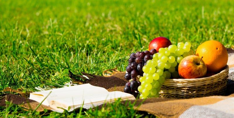 Obstkorb und ein Buch auf einem grünen Rasen für die Entspannung stockfoto