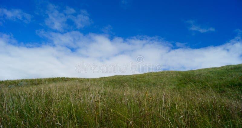 Obszarów trawiastych skłony i niebo obrazy royalty free