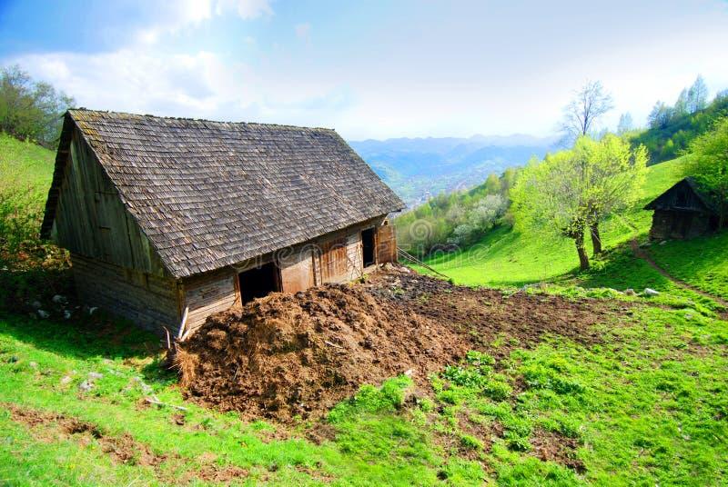obszarów wiejskich stodoły krowa zdjęcia royalty free