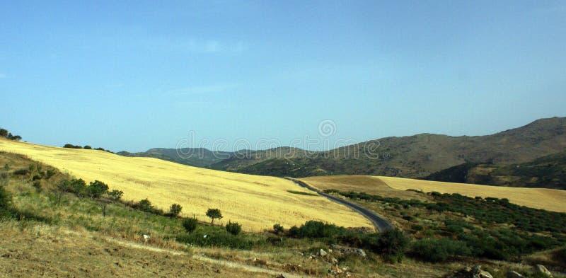 obszarów wiejskich wzgórza obraz stock