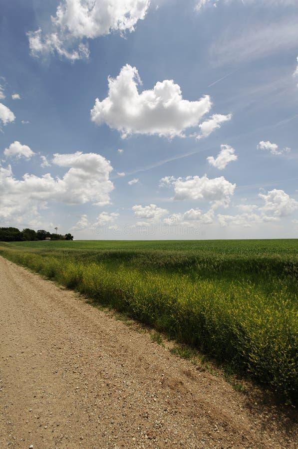 obszar rolnictwa horyzont żwiru się wiejskiego drogowy obrazy stock