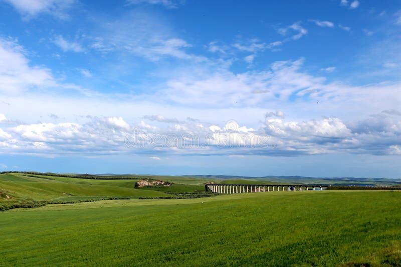 Obszar trawiasty i most zdjęcia royalty free
