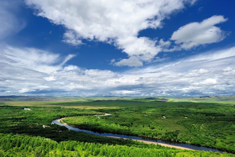 obszar trawiasty sceneria zdjęcie royalty free