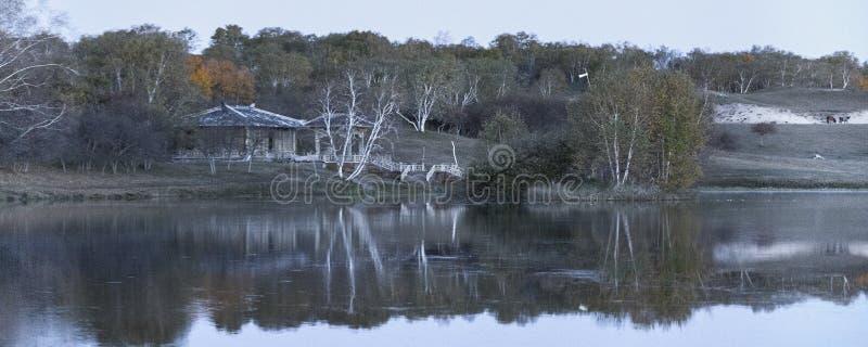 Obszary trawiaści jeziorni obrazy stock