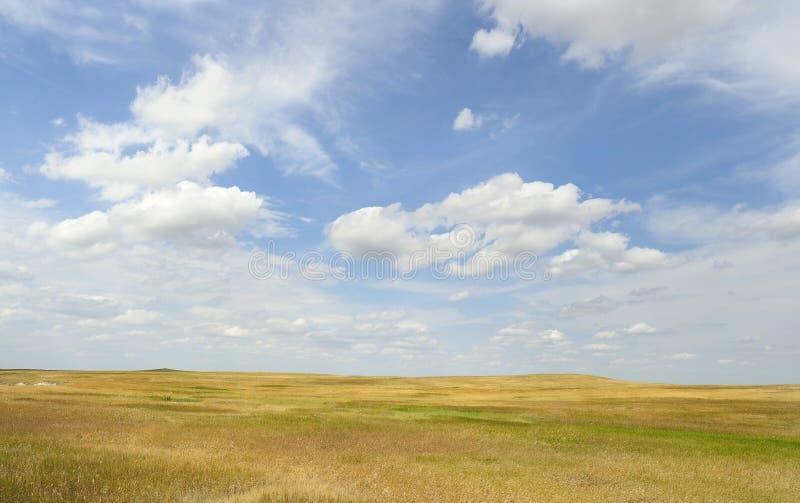 Obszary trawiaści Wielkie równiny, Południowy Dakota fotografia royalty free