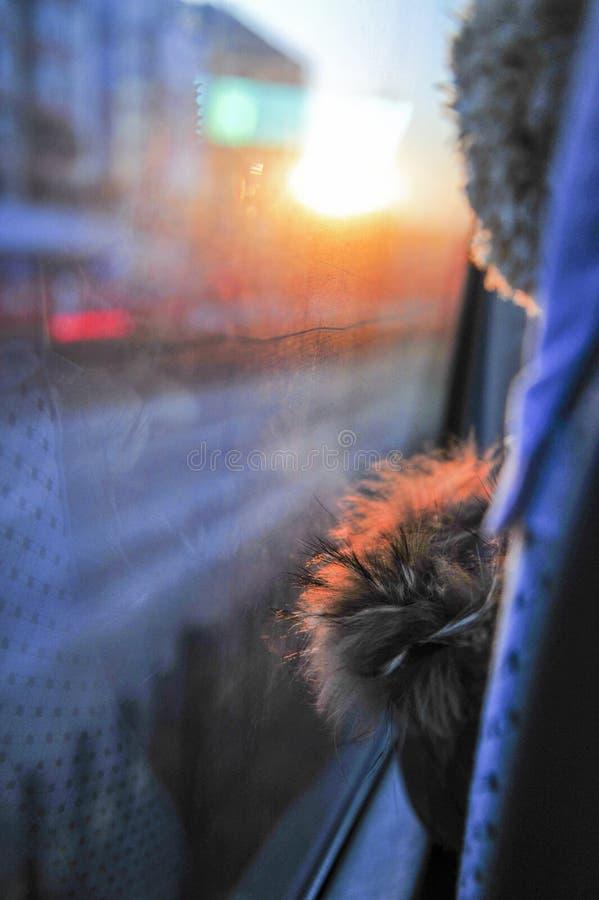 Obtenção na excursão do ônibus no por do sol imagem de stock royalty free