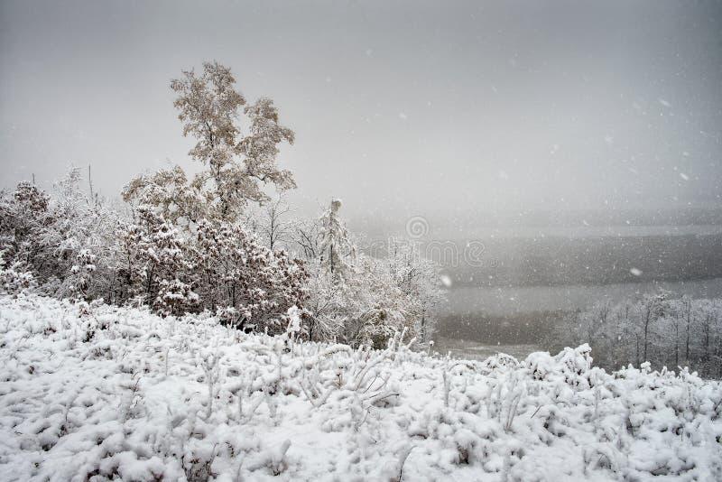 Obtendo um inverno frio foto de stock royalty free